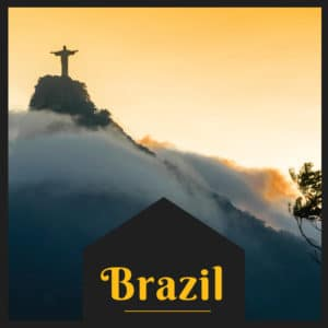 Discovery Brazil Experience